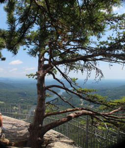 The view of the Lake Lure valley from North Carolina's Chimney Rock is incomparable.